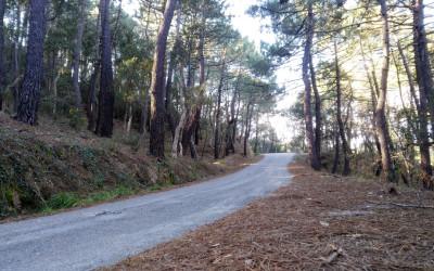 La carretera de tus sueños ciclistas