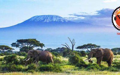Tour del Kilimanjaro en mtb o gravel: una experiencia única